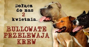 bullowate_krew_www