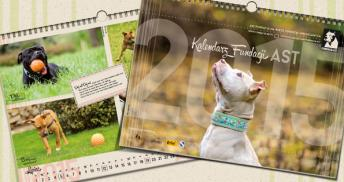 kalendarz2015 baner